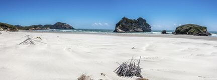 White beach panorama with cliffs and dry wood