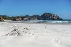White beach panorama with rocks and dry wood
