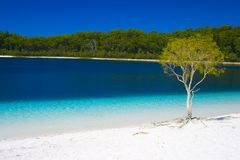 White Beach With Turquoise Water Stock Image