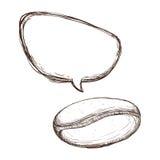 White bean coffee bubble icon Royalty Free Stock Image