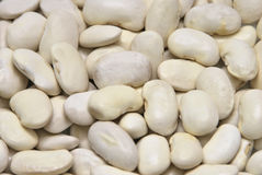 White beans Royalty Free Stock Photography