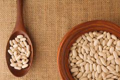 White  Beans Royalty Free Stock Images