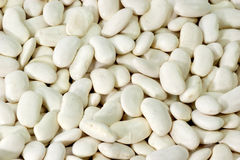 White Beans. As Background. Picture shot in Studio Royalty Free Stock Photos