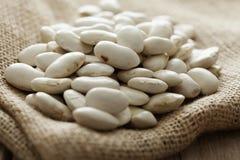 White beans. Bowl of white giant beans Royalty Free Stock Photo