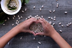 White beans and female hands symbolize healthy eating. Healthy food stock images