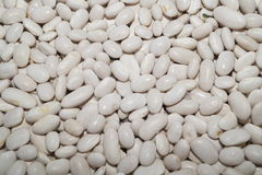White beans Stock Photo