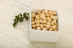 White beans. Raw White beans in the bowl over wooden background Stock Photos