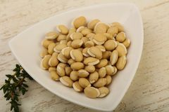 White beans. Raw White beans in the bowl over wooden background Stock Image