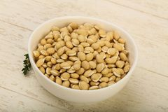 White beans. Raw White beans in the bowl over wooden background Royalty Free Stock Photos