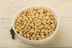 White beans. Raw White beans in the bowl over wooden background Royalty Free Stock Photo
