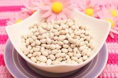 White Beans Royalty Free Stock Photo