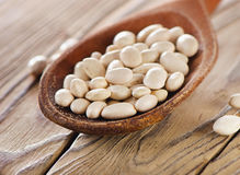 White beans in a spoon. Royalty Free Stock Image