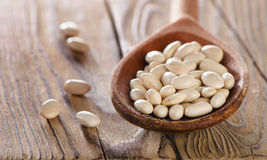 White beans in the spoon. Royalty Free Stock Photos