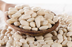White beans in a wooden spoon. Stock Images