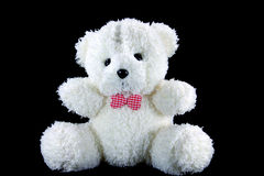 White Bear. On black background royalty free stock photography