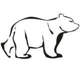 white bear Zdjęcia Royalty Free
