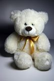 White bear. Small white bear for children Stock Images