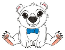 White bear with blue bow. Polar white bear boy with blue bow sit Stock Images