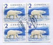 White bear on canadian stamps Stock Images