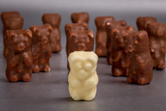 The white bear in chocolate Royalty Free Stock Image
