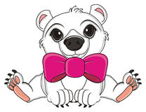 White bear with pink bow. Polar white bear with large pink bow and ribbon sit Stock Images