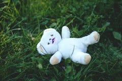 White Bear Plush Toy Royalty Free Stock Photos