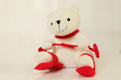White bear on the red skiing. Royalty Free Stock Images