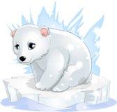 White bear Stock Photos