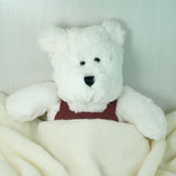 White bear toy with blanket Stock Photos