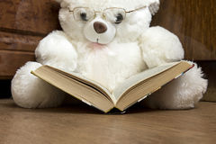 White bear toy with glasses glasses reading a book Royalty Free Stock Photo