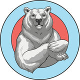 White bear Royalty Free Stock Image