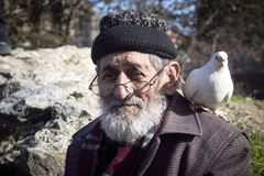 White Bearded Grandfather and Pigeons friendly. Stock Photos
