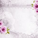 White beautiful wedding background Stock Photos