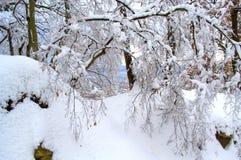 Town view through snowy branches Stock Photos