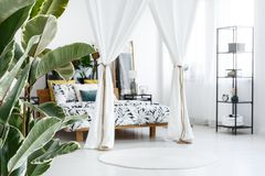 White bedroom with canopied bed. Round rug and plants in white bedroom interior with canopied bed and clock on shelf Royalty Free Stock Images