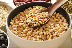 White beens Royalty Free Stock Photography