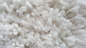 white beige carpet. soft texture Royalty Free Stock Images