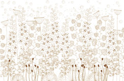 White and beige flowers and grass on a white  background.vector illustration. White and beige flowers and grass on a white  background Stock Photo