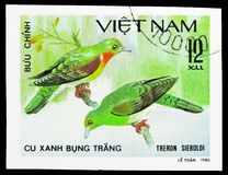 White-bellied Green-pigeon (Treron sieboldii), Doves serie, circa 1981. MOSCOW, RUSSIA - SEPTEMBER 26, 2018: A stamp printed in Vietnam shows White-bellied Green royalty free stock images