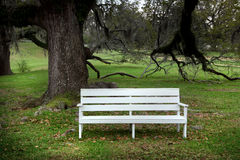 White bench Stock Photo