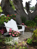 White Bench. White Adirondack Bench in garden, Mendocino, CA Royalty Free Stock Photo