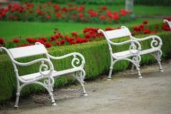 White bench Stock Image