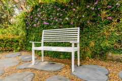 White bench in the garden and greenleaves wall Stock Image