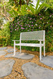 White bench in the garden and greenleaves wall Stock Photos