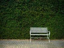 White bench in garden Stock Photography