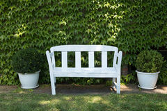 White bench in the garden. White bench standing on a lawn at the garden Stock Images