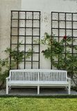 White bench in the garden. With roses royalty free stock photo