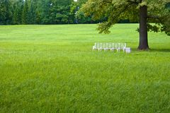 White bench on a green lawn under tree Stock Photo