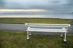 White bench at lake. On winters day Royalty Free Stock Images
