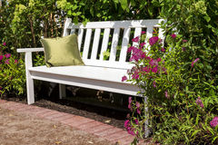 White bench in the lush garden.  Stock Photos